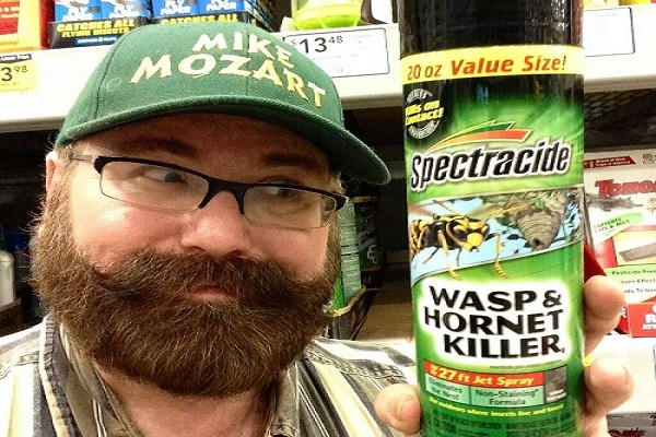 Buying Guide Of Wasp and Hornet Killer